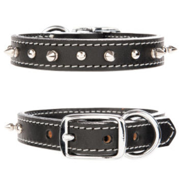Bret Michaels Pets Rock™ Single Spiked Dog Collar | Collars | PetSmart