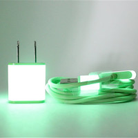 Glow in the Dark iPhone Wall Charger