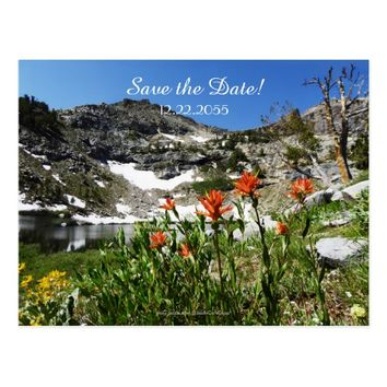 Save the Date 70th Birthday Announcement Postcard