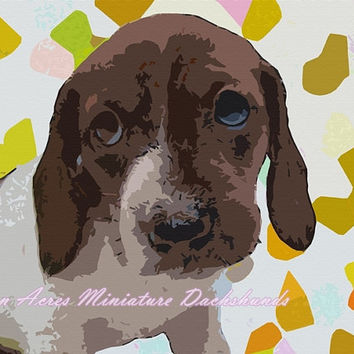 Dachshund Print Photography - Lime Green Colors Wall Art by AstonAcresDachshunds