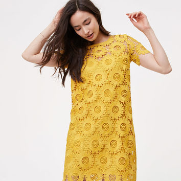 Sunflower Lace Dress | LOFT