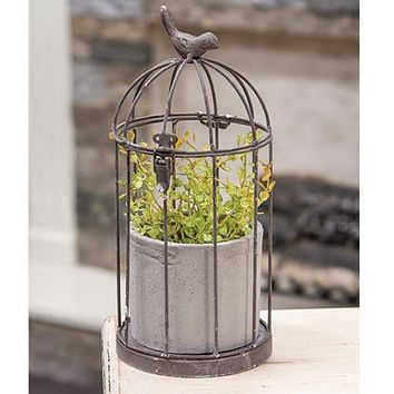 Wire Birdcage with Cement Pot Planter