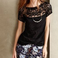 Gossamer Tee by Meadow Rue