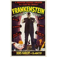(24inx36in ) Frankenstein poster