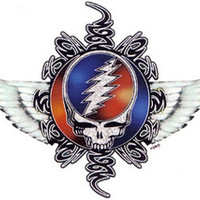 Buy Grateful Dead SYF 73 items on Bonanza