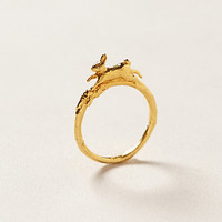Leap Hare Ring