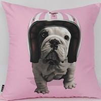 biker bulldog - the pillow