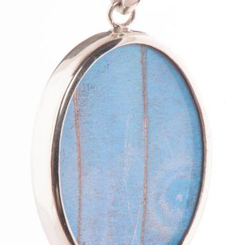 Silver butterfly pendant  - Iridescent Blue Oval Morpho Didius