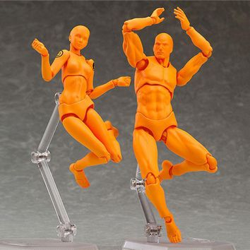 Male Female Action Figure Doll Human Body Model Toys Anime Cartoon Painting Drawing Funny Gadgets