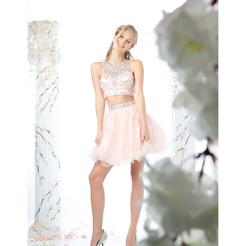 Blush Pink Tulle Two Piece Short Dress 2016 Prom Dresses