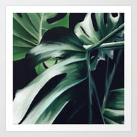 Monstera Deliciosa Art Print by lostanaw
