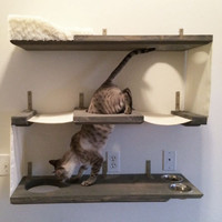 3 Level Cat Bunker - Cat Hammock Shelves