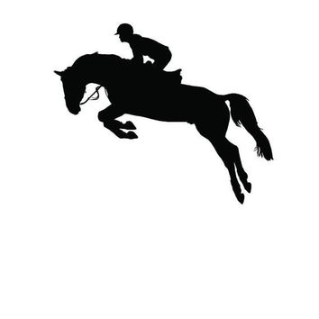 Horse Jumping Wall Art Stylish Stickers Vinyl Decal Home Graphics Lounge Bedroom