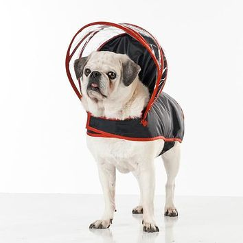 Push Pushi Rainbow Line Dog Raincoat - Black with Red Trim