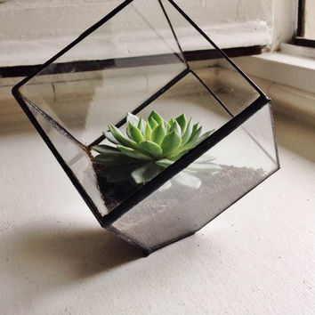 Stained Glass Cube Terrarium ON SALE