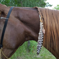 Arrowhead and Feather Equine Mane, Tail or Hair Ornament - turkey feather horse jewelry - American Indian Style Horse Costume