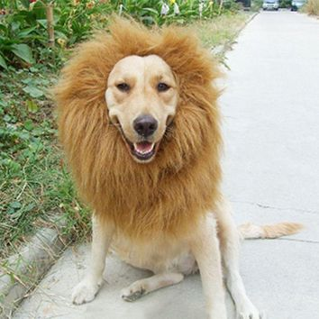 Pet Costume Cat Halloween Clothes Fancy Dress Up Lion Mane Wig For Dogs Festival Dress Up