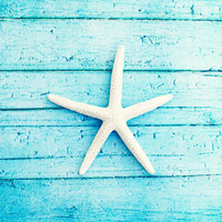 "Beach Photography - starfish aqua blue white photo print seashore coastal living cottage decor - 11x14, 8x10 Photograph, ""On the Boardwalk"""