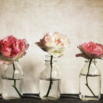 Roses Art Print by Anne Staub