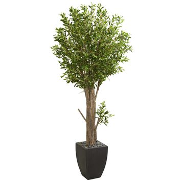 6.5' Olive Artificial Tree in Black Planter