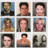 Set of 15 1x1 Celebrity Mugshot Stickers Lindsay by awkwardmoment