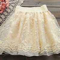 Sweet noble princess embroider lace skirt