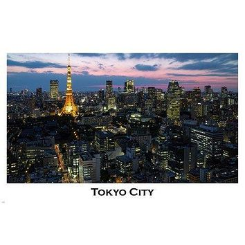 TOKYO cityscape POSTER 24X36 illuminated VIOLET-PINK sky rare AWESOME new!
