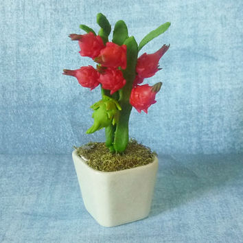 "Dragon fruit tree pot 3 3/4"" Dollhouse miniature/ fruit tree pot/ Miniature clay fruit/ Dollhouse plants/ Miniatures"