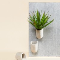 Gift Republic Concrete Magnetic Planters at asos.com