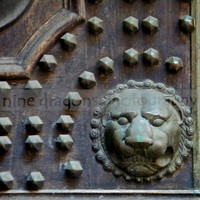 "Verdigris Lion Head Architectural Detail - Door Detail Photograph - Fine Art Print - 8""x8"" Square Art"