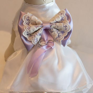 Lilac Dog dress, Dog ring bearer, Lilac pet Wedding accessory