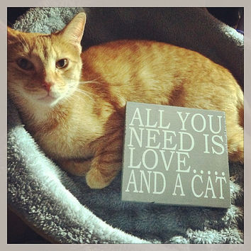 All You Need Is Love....And A Cat 6x6 Wood Sign