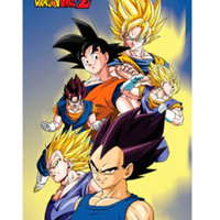 Dragon Ball Z Goku Vegeta & Vegito Poster