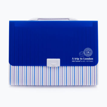 Plastic Briefcase Storage Folder A4 13 Grids