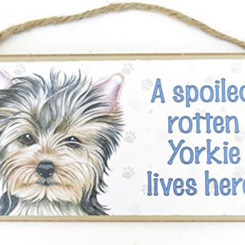 Yorkshire Terrier, Dog Lovers, 5 X 10 Dog Wall Plaque, a Spoiled Rotten Yorkshire Terrier Lives Here