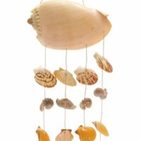 "Attractive Shell Wind Chime 7""W 26""H"