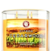 3-Wick Candle Citron Cedarwood