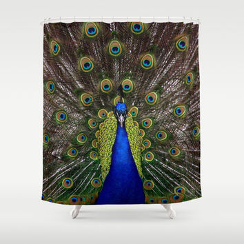 Vibrant pretty as a peacock bird feather art nouveau animal nature photograph Shower Curtain by iGallery