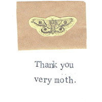 Funny Nerdy Natural History Science Card: Thank You Very Moth