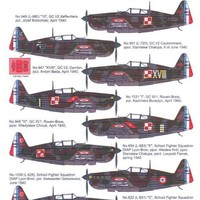 Techmod Decals 1/48 MORANE SAULNIER MS-406 Fighter with Mask