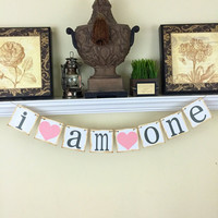 1st Birthday Banner, Baby's first birthday, I am one banner, 1st birthday party decoration, Grey and Pink