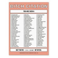 Bitch Citation Nifty Note ? A Funny Message Pad by Knock Knock