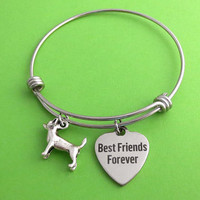 Dog, Best Friends Forever, Silver, Keychain, Bangle, Necklace, Dog lovers, Birthday, Lovers, Friends, Sister, Gift