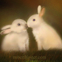 white rabbit, bunny art, bunnies kiss, art, BUNNY LOVE, signed print, painting