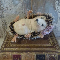 Henrietta Hedgehog: vintage style, soft sculpture animal, artist bear.
