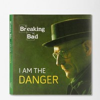 Breaking Bad: I Am The Danger By Running Press - Urban Outfitters