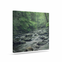 """Suzanne Harford """"Misty Forest Stream"""" Nature Photography Canvas Art"""