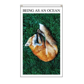 Sleeping Fox White Flag : BAAO : Being As An Ocean