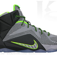 Nike Big Kid's Lebron XII 12 GS Dunkman