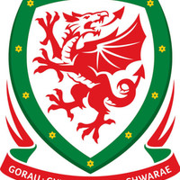 Welsh Team Crest Iron on Screen Print fabric Machine Washable Transfer Wales | eBay